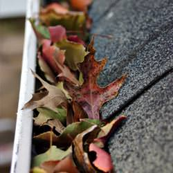 Clogged gutters filled with fall leaves  in Crawfordsville